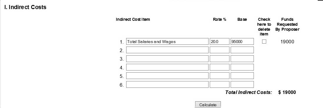 Indirect costs section with item, rate %, and base input fields